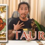"TAURUS - ""EVERYTHING IS ON HOLD"" DECEMBER 8-14, 2020 WEEKLY TAROT READING"