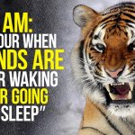 WAKE UP AND CONQUER YOUR DAY - New Motivational Video Compilation - 30-Minute Morning Motivation