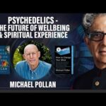 Psychedelics - The Future of Wellbeing and Spiritual Experience