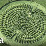 Famous Author Details SHOCKING Experience Inside Crop Circle