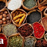 The Ancient Living Science of Ayurveda